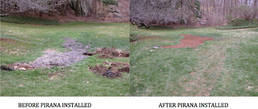 Before and After Pirana Installation