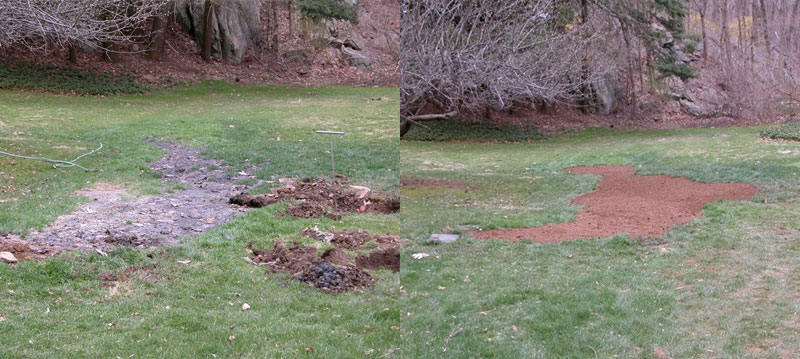Ground comparison before and after Pirana installation.